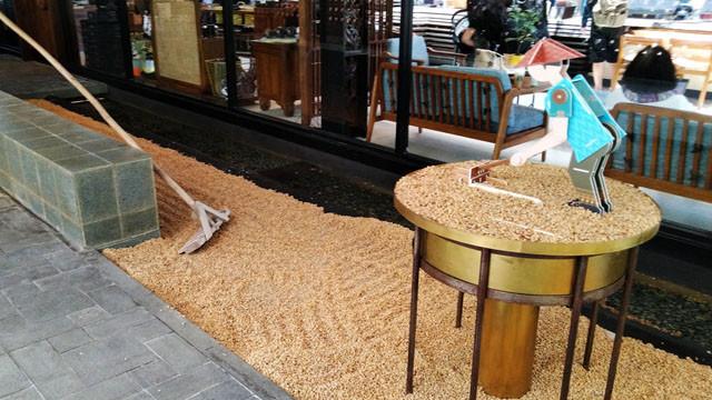 コーヒー豆の展示