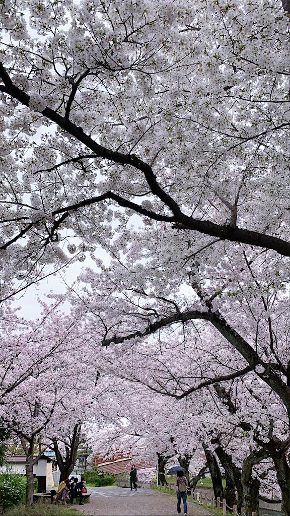 f:id:monchichi23:20210407161250j:image