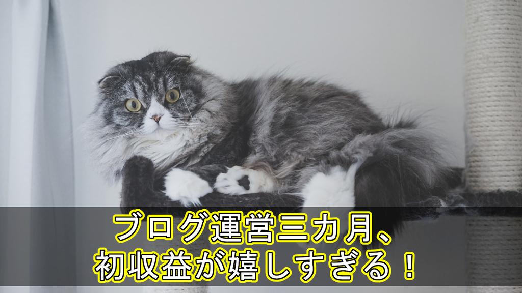 f:id:money-gakusei:20181014223047j:plain