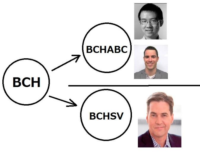 BCH分岐対立構造
