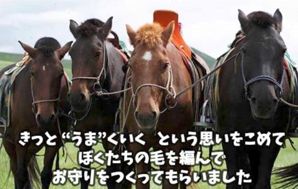 f:id:mongol_goimon_tabitamago:20210122104605j:plain