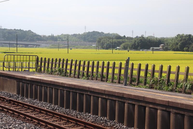 下総松崎から成田スカイアクセス線を望む