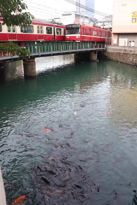 京急 浅山橋