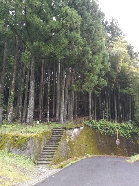 f:id:moni-san:20170513210824j:image