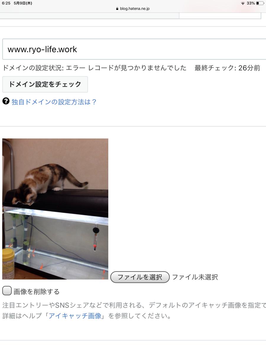 f:id:monkey_777:20190509062533p:plain