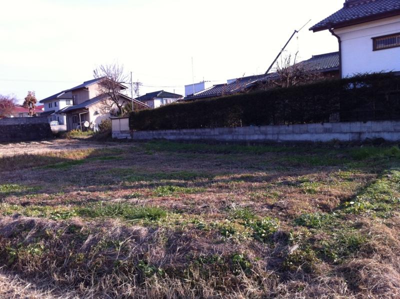 f:id:monkichi64:20101117143349j:image