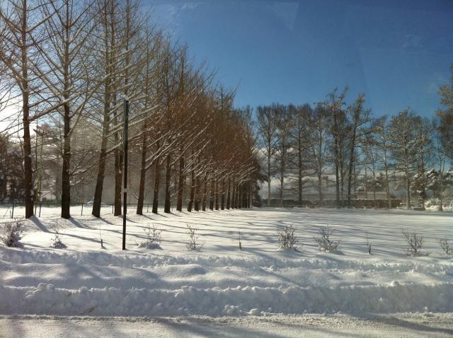 f:id:monkichi64:20110215090746j:image