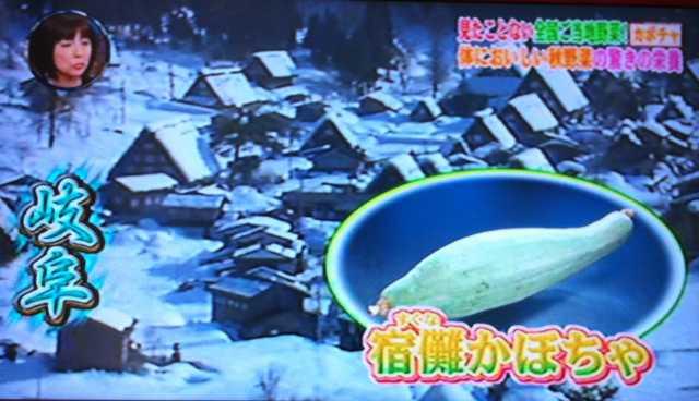 f:id:monkichi64:20111019093618j:image:w360