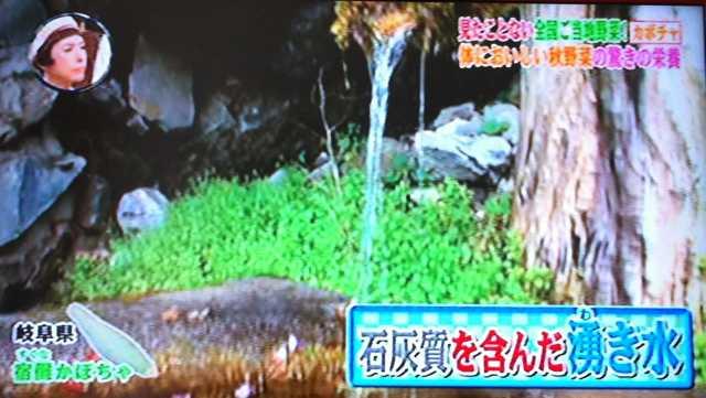 f:id:monkichi64:20111019093624j:image:w360