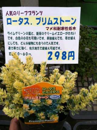 f:id:monkichi64:20120322164843j:image:w360