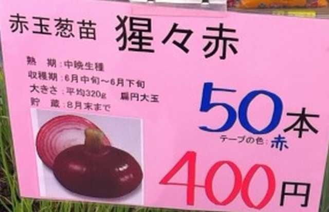 f:id:monkichi64:20121025150959j:image