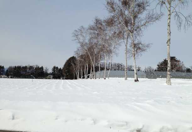 f:id:monkichi64:20130217112459j:image