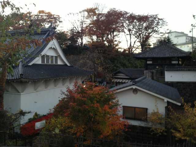 f:id:monkichi64:20131111164625j:image