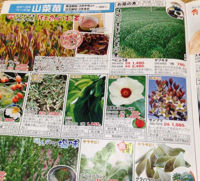 f:id:monkichi64:20140113223125j:image