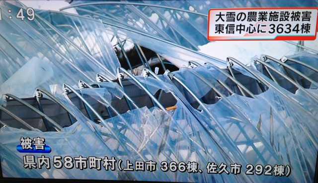 f:id:monkichi64:20140219114926j:image