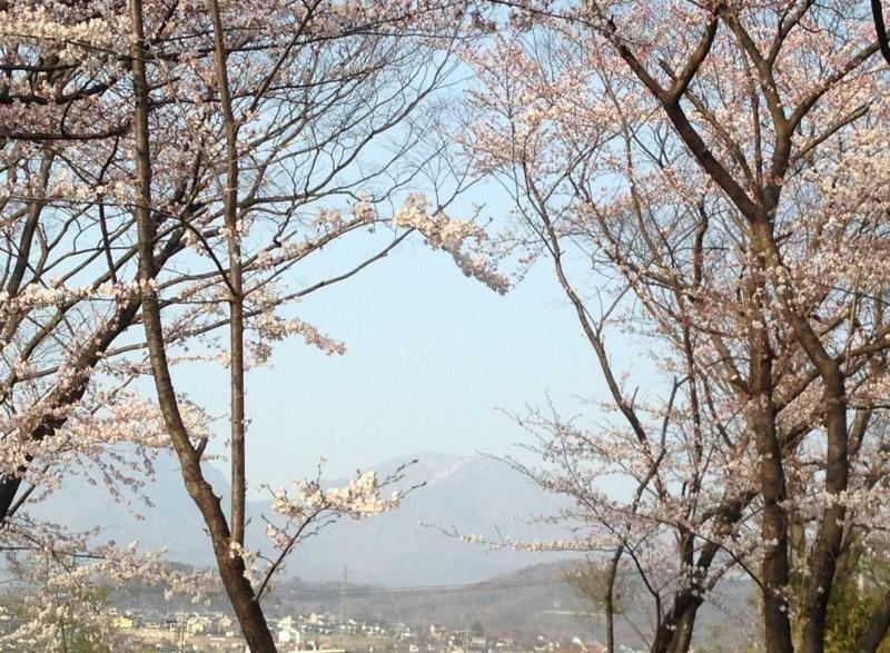 f:id:monkichi64:20140417162622j:image