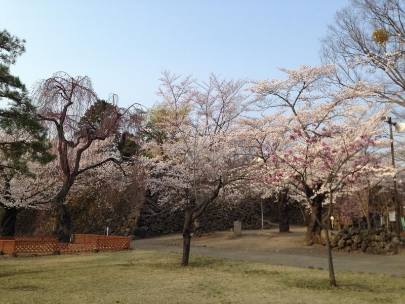 f:id:monkichi64:20140417164226j:image