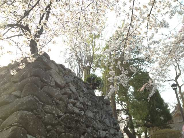 f:id:monkichi64:20140417164726j:image