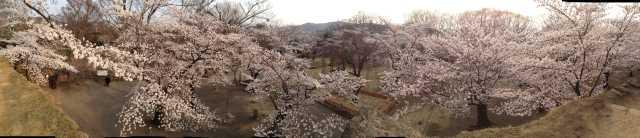f:id:monkichi64:20140417164923j:image