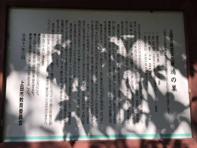 f:id:monkichi64:20141011113632j:image