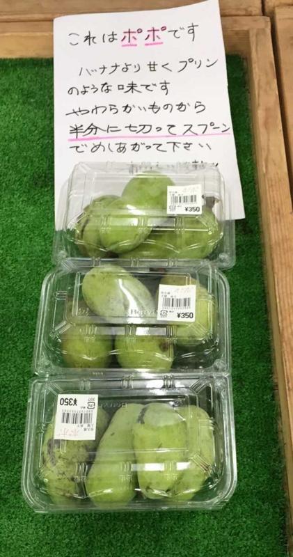 f:id:monkichi64:20141017150351j:image