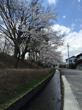 f:id:monkichi64:20150422110046j:image
