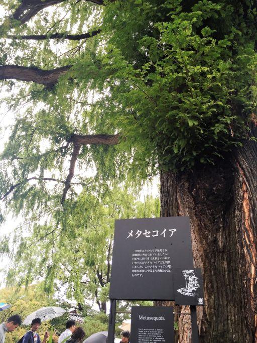 f:id:monkichi64:20150925105806j:image