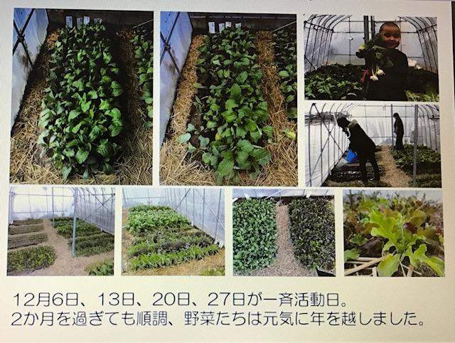 f:id:monkichi64:20170329082632j:image