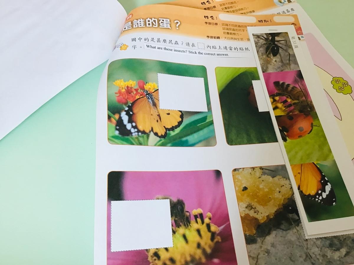 香港 幼稚園 宿題