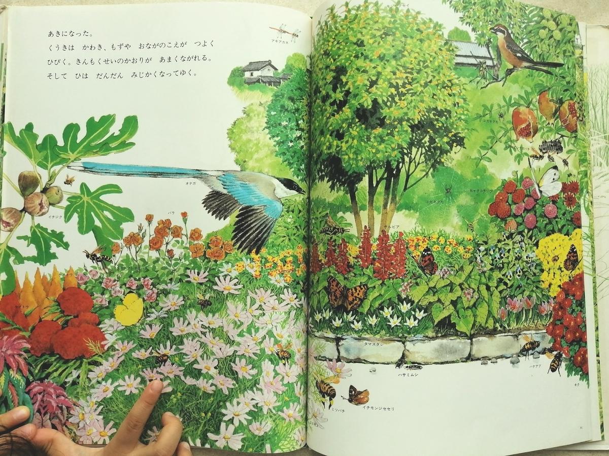道ばたの四季 日本文化 絵本