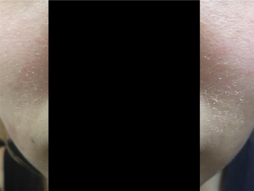 f:id:monotone-room:20190617023027j:image