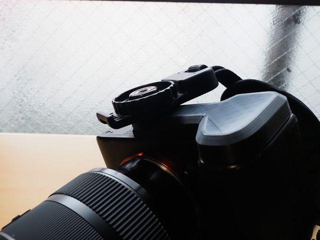 f:id:monphoto:20200118231036j:plain