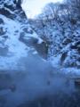 地獄谷のスノーモンキー。