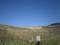 ロンデ・パキの畑。