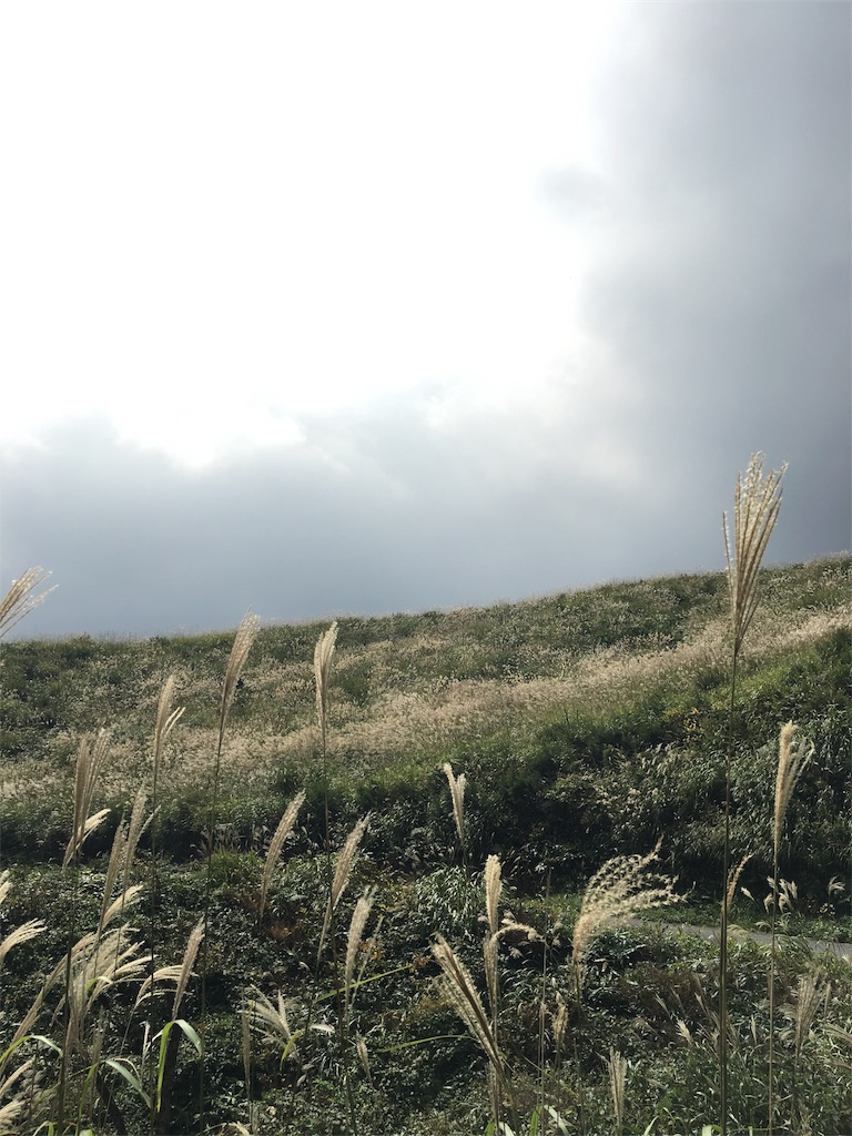 f:id:montanista:20161002162934j:image