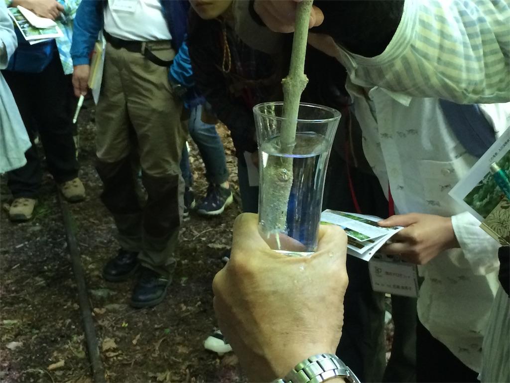 f:id:monteverde-aroma:20180520172750j:image