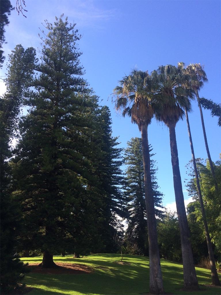 f:id:monteverde-aroma:20190809155146j:plain
