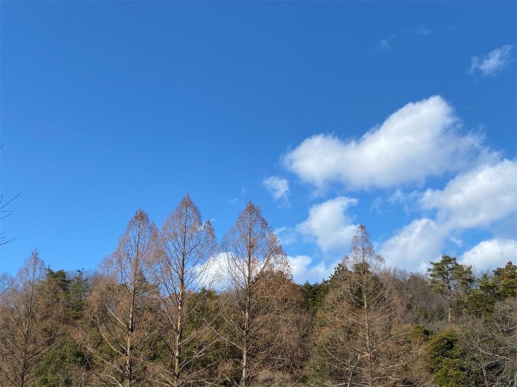 f:id:monteverde-aroma:20200123155736j:image