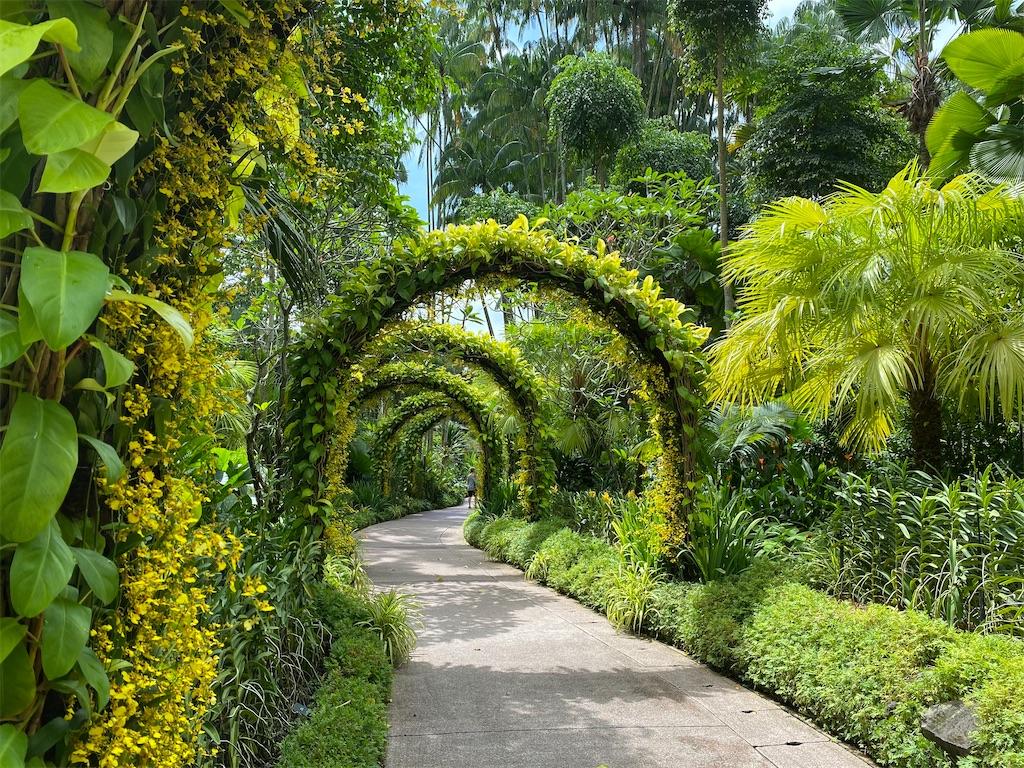 f:id:monteverde-aroma:20200214140023j:image
