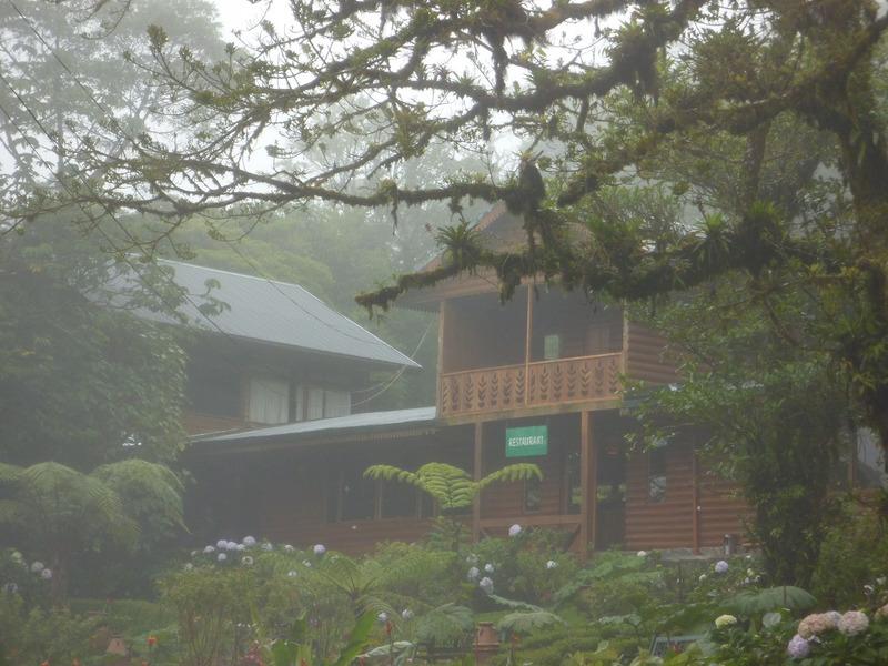 f:id:monteverde-aroma:20200425145816j:plain