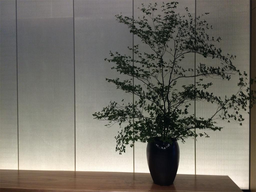 f:id:monteverde-aroma:20200501150352j:plain