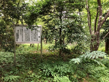 f:id:monyakata:20190716165333j:plain