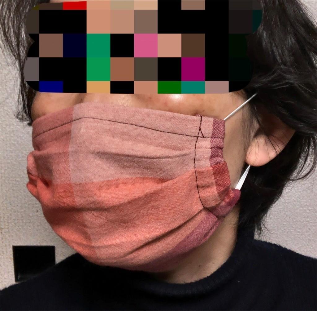 f:id:monyakata:20200510164111j:image