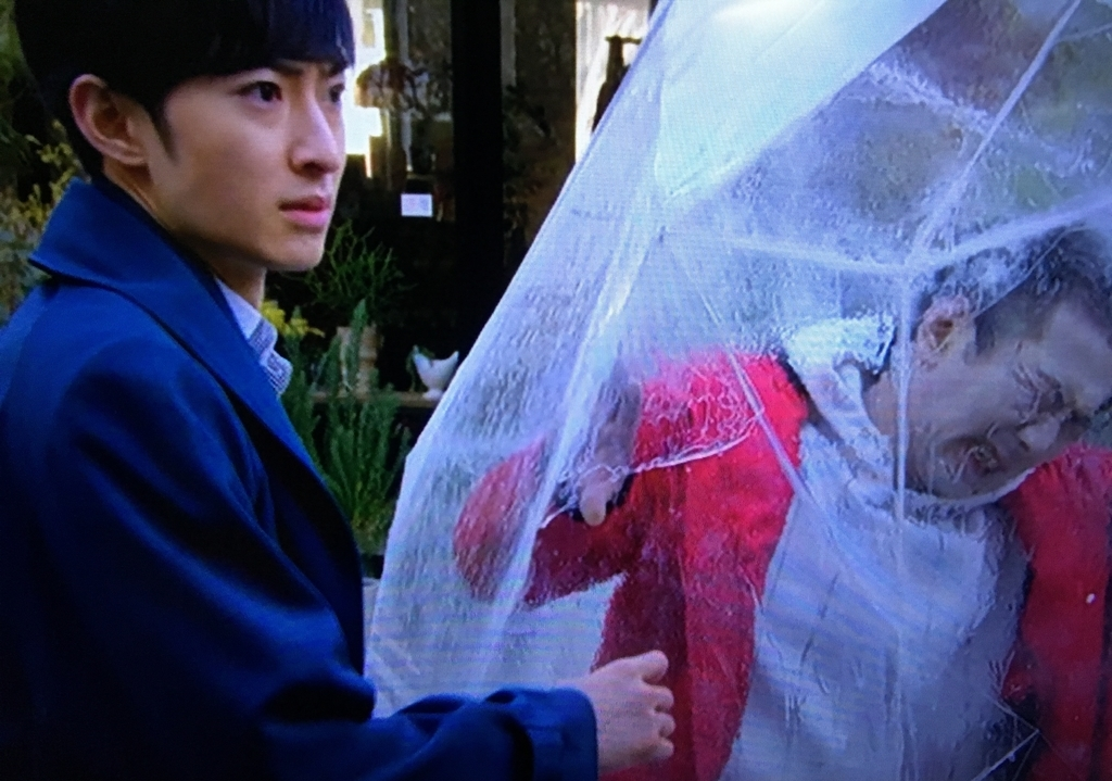 f:id:moon-tiara-action:20190218215038j:plain