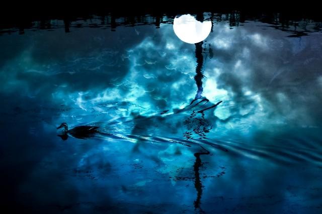 f:id:moon_tuki:20200917223112j:plain