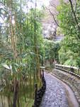 suzumushi-temple2