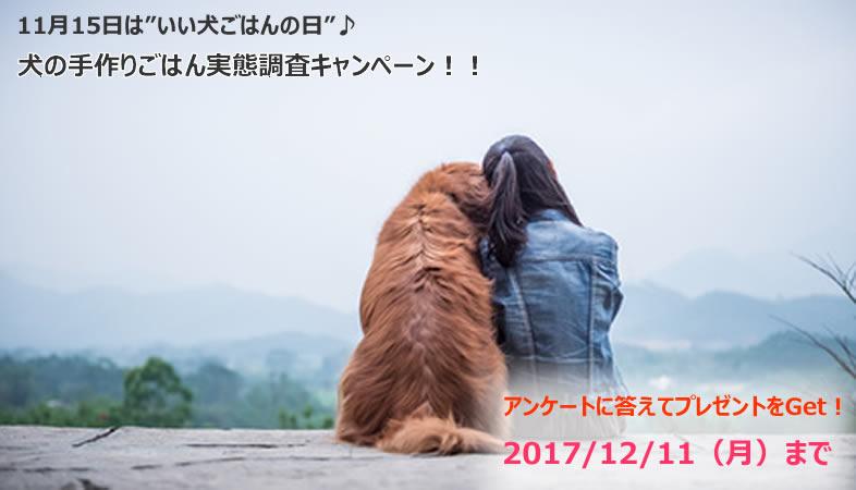 f:id:moonda:20171115202546j:plain