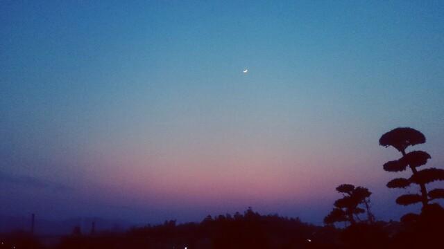 f:id:moonlightmagic:20170331111423j:image