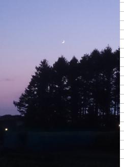 f:id:moonlightsurf:20190803202112p:plain