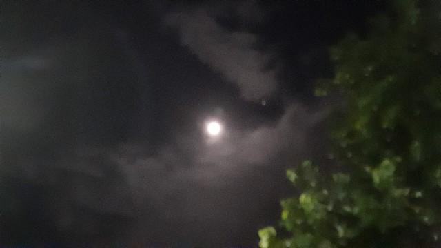 f:id:moonmond:20201030231843j:image